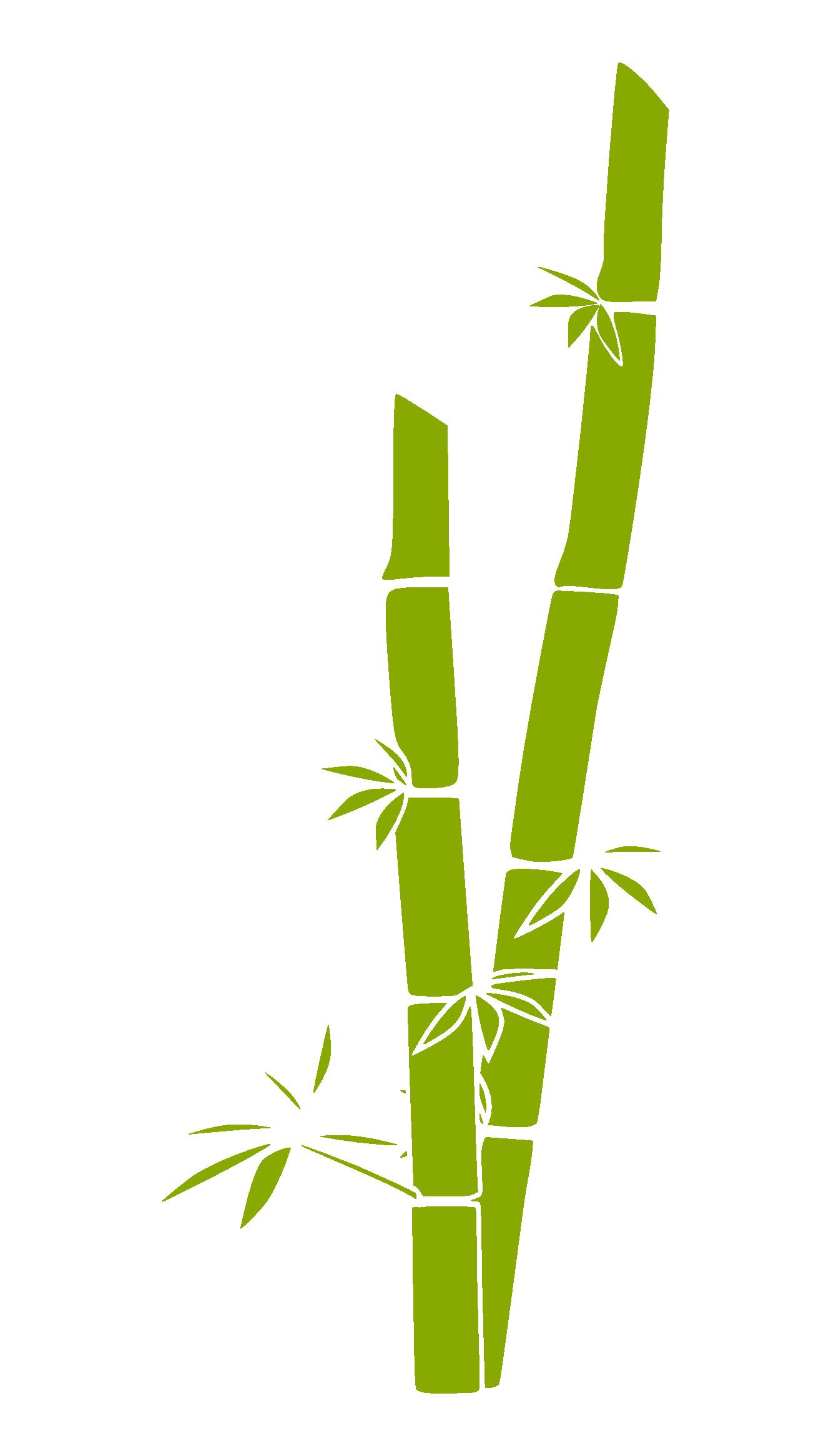 pin by bamboo planner on bamboo | bamboo drawing, bamboo art, bamboo tattoo  pinterest