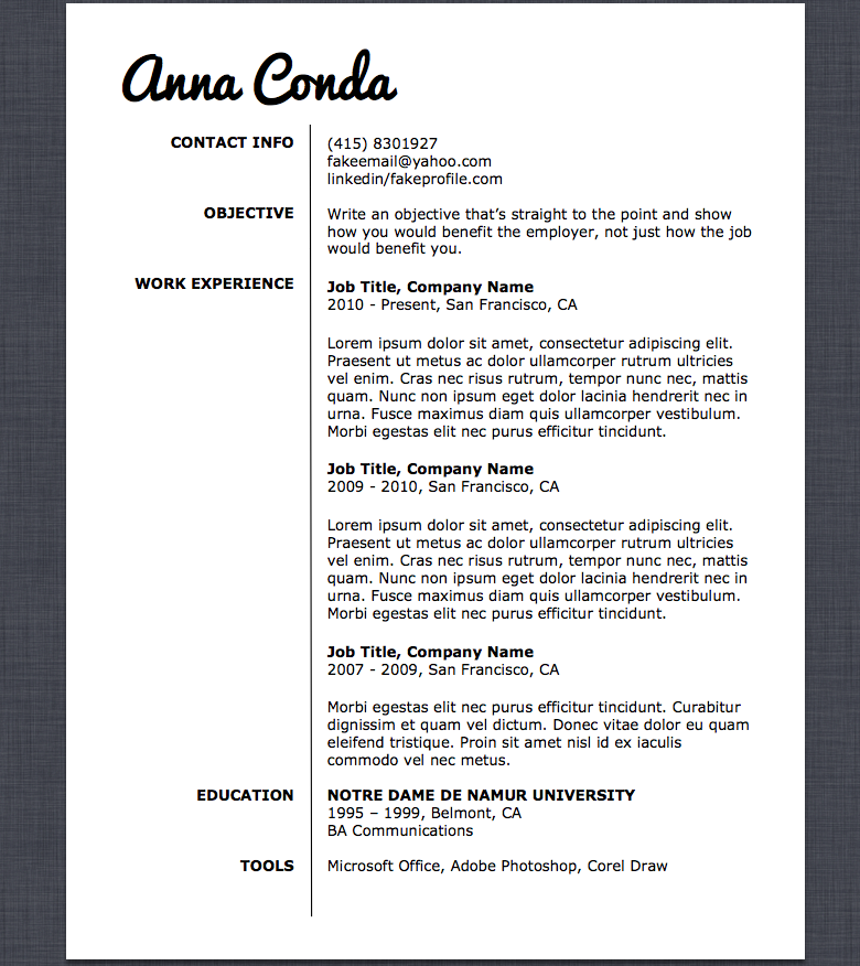 Resume Template  Job Search Organizer Set Modern Resume