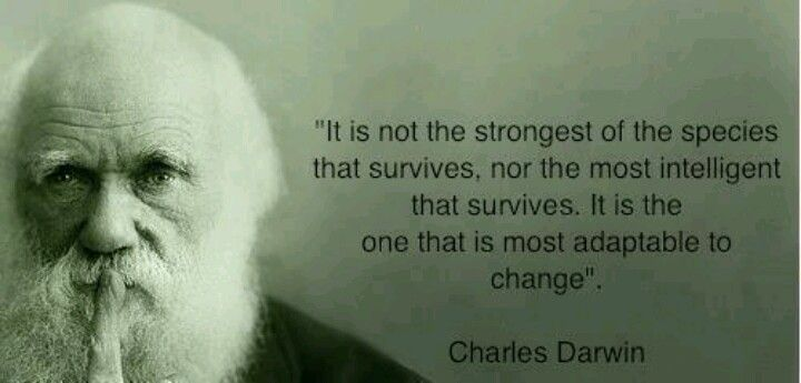 Survival of the most adaptable!