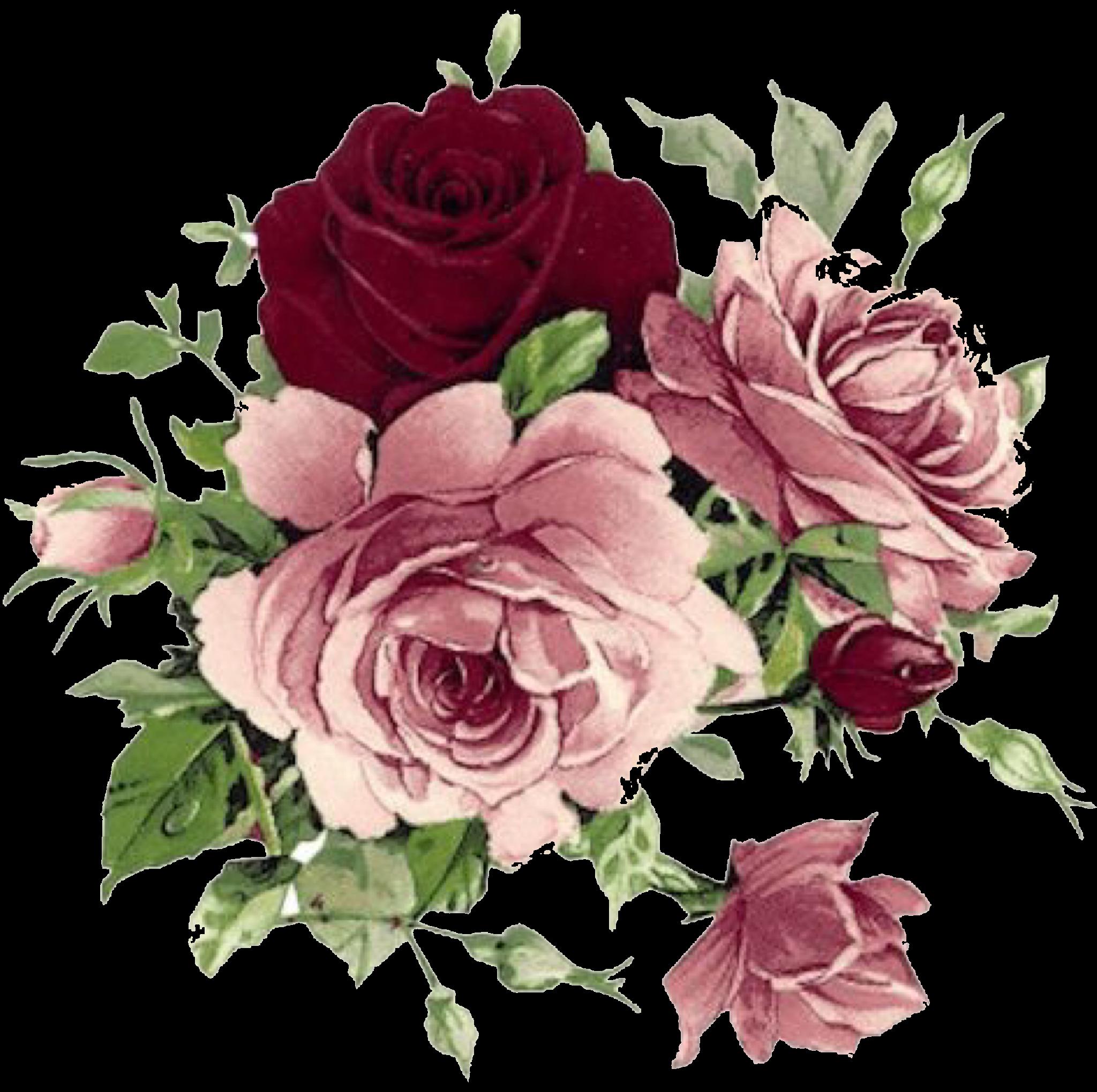 ورد ورود ورد ملون Flower زهرة Freetoedit Flower Painting Floral Painting Flower Art