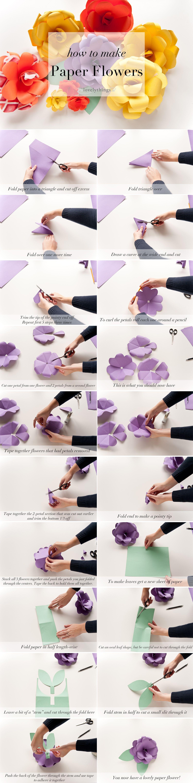 Diy Paper Flowers Thelovelythings Diy Paper Flowers