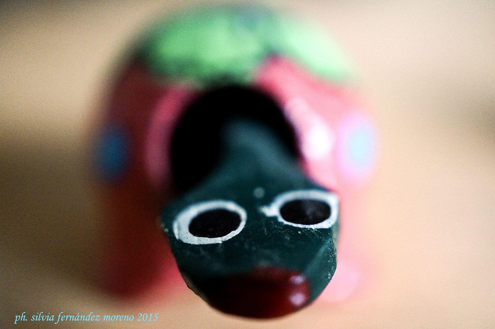 Paloma by Silvia Fernández Moreno on 500px #tortuga #turtle #deco #miniaturas #miniature #anteojos #lenses #dof #photography #craft