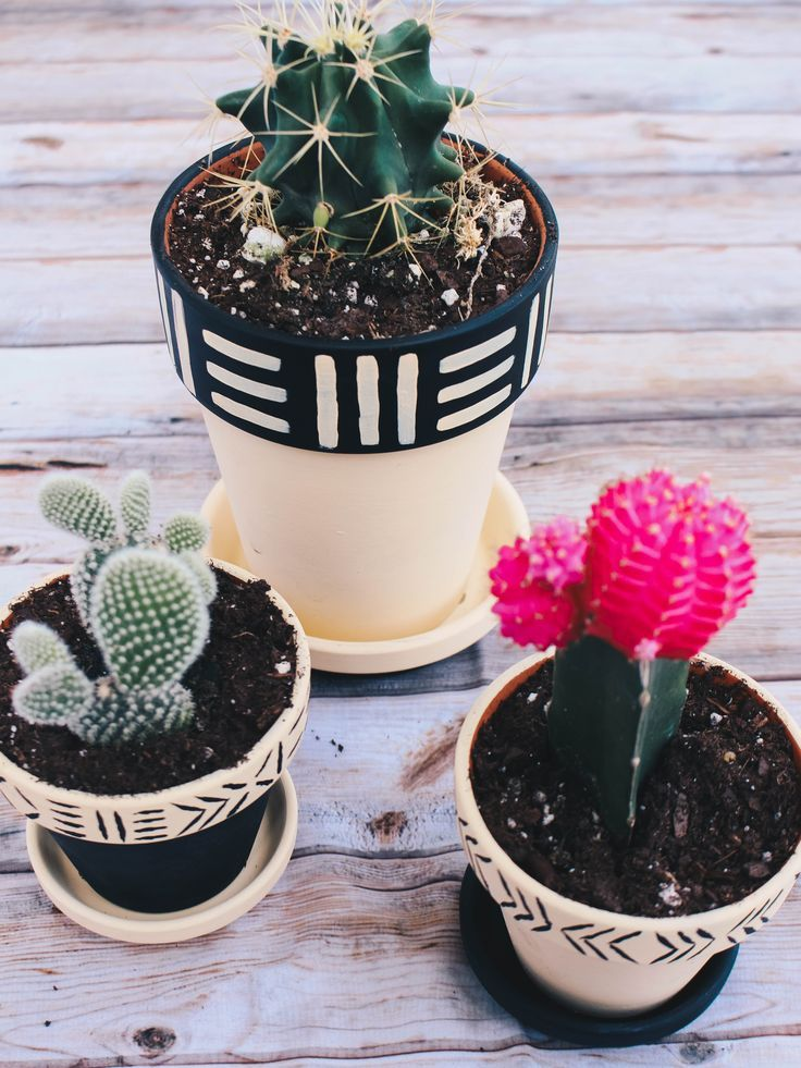 DIY painted pots with a punny hidden mesage  yeah she tried that #decordiy #flowerpot