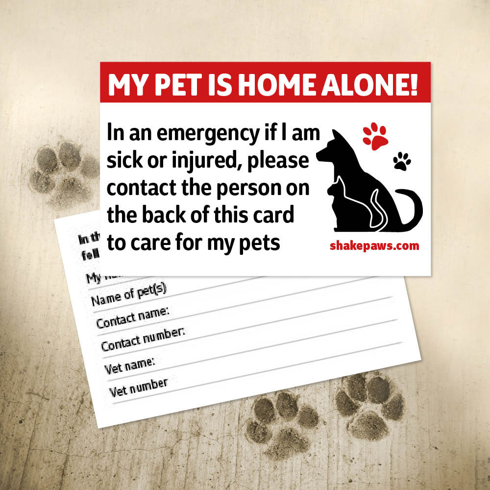Don T Leave Home Without It Every Dog Owner Should Carry A Home Alone Pet Safety Card Things Happen In Life That We Have No Control Pet Safety Pets Home Alone