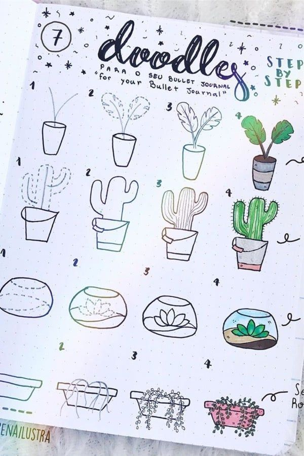 Photo of 20 Creative step by step cactus and succulent doodle ideas for your bullet journ… – number