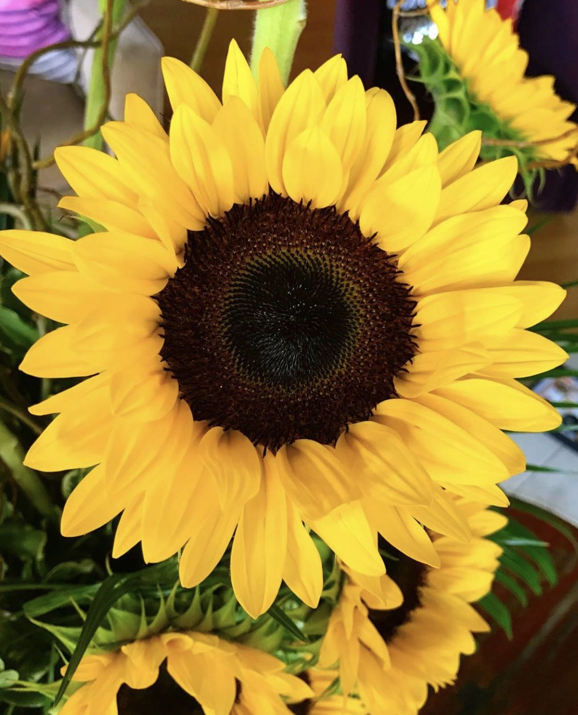 Gorgeous Sunflower  #florist #flowershop #flowers #florals #flowerarrangement #floralarrangement #flowerdesign #flowerstalking #flowerphotography #floraldesign #flowerdelivery #sunflower #sunflowers #summer #flowersoftheday #blooms #beautiful #flowerlover #flowerlovers #flowerslovers #flowerpower