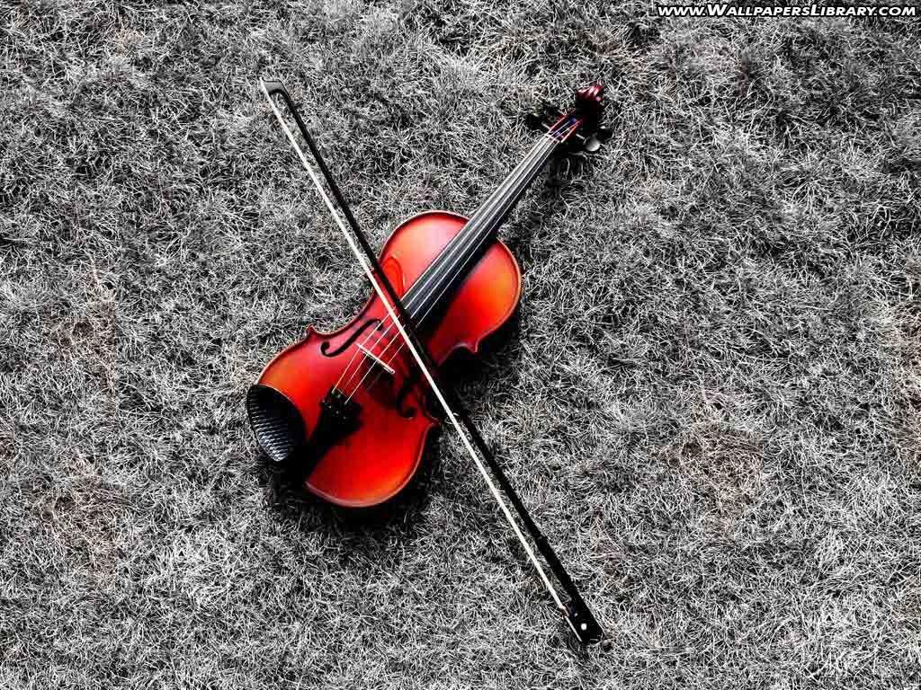 Red Violin Wallpaper Violin Violin Music Red Photography