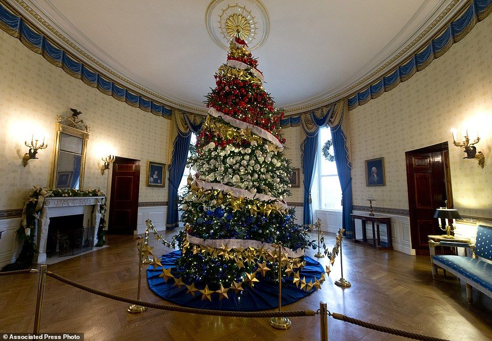 Socks Clinton sits under the White House Christmas Tree. | Socks ...