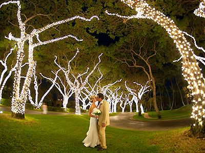 Grand wailea resort and spa wailea maui weddings hawaii wedding grand wailea resort and spa wailea maui weddings hawaii wedding venues 96753 junglespirit Images
