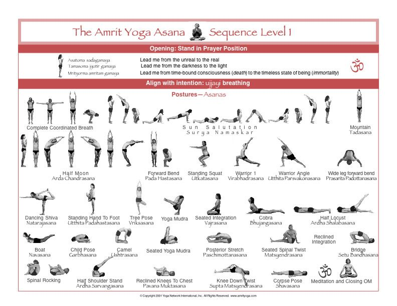 Amrit Level 1 Sequence Google Search Kripalu Yoga Yoga Poses Yoga Chart