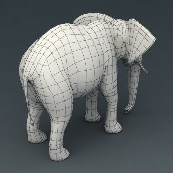 Rigged Elephant 3d 3ds Elephant Elephant Anatomy Animal Design