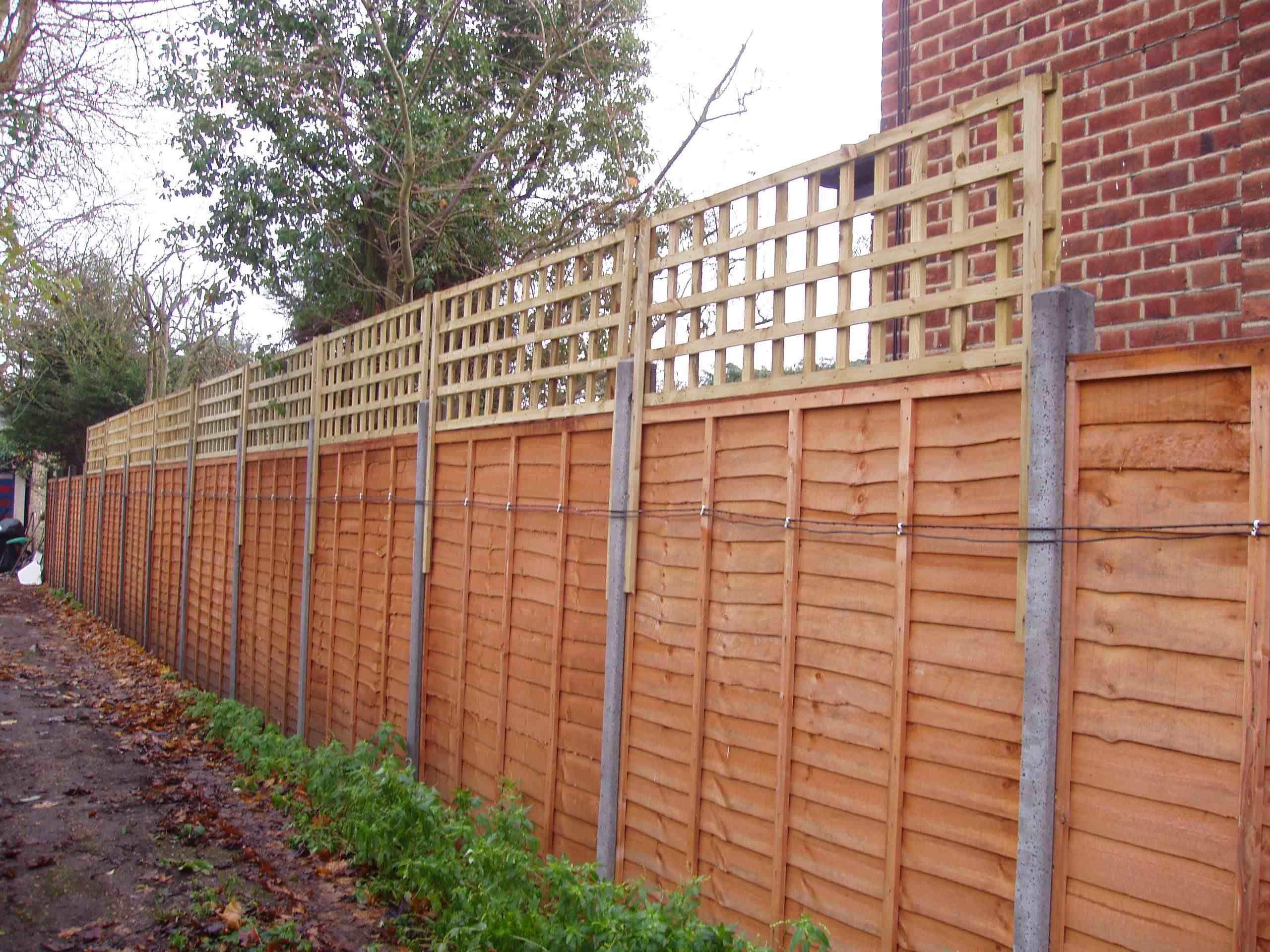 51 best fl vines images on pinterest garden ideas backyard unique design for prefab fence panels baanklon Images