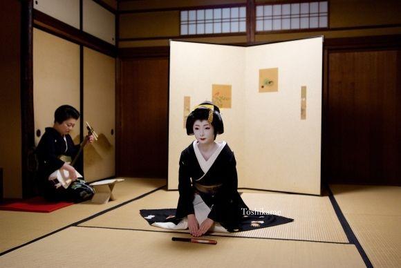 京都の芸舞妓さんをメインに撮影しています。