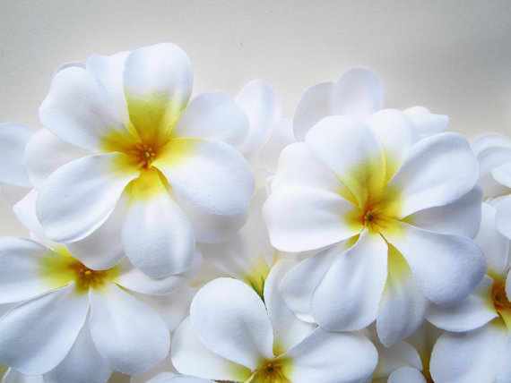 100 Plumeria Frangipani Heads Artificial Silk Flower 3 Inches Wholesale Lot Floral Supplies Wholesale Artificial Silk Flowers Artificial Flowers Decor