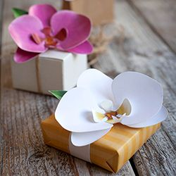 learn how to make a paper orchid with our diy tutorial and free