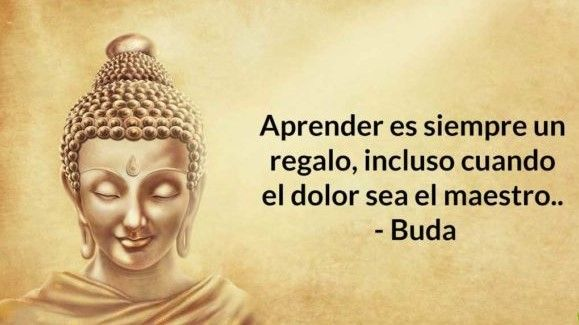 Port Frases Budistas Buddha Teachings Cool Words New Quotes