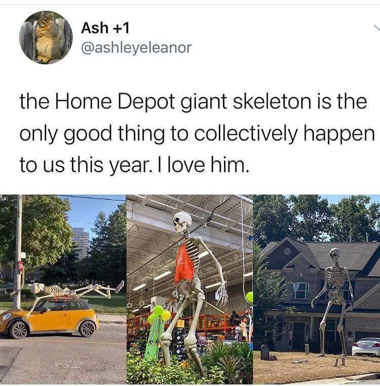 25 Funny Jokes From This Week On Twitter In 2020 Spooky Memes Halloween Memes Funny Tweets