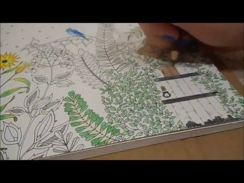 Watch Me Colour The First Page In My Secret Garden Colouring Book Part 2 Will Be Uploaded Shortly