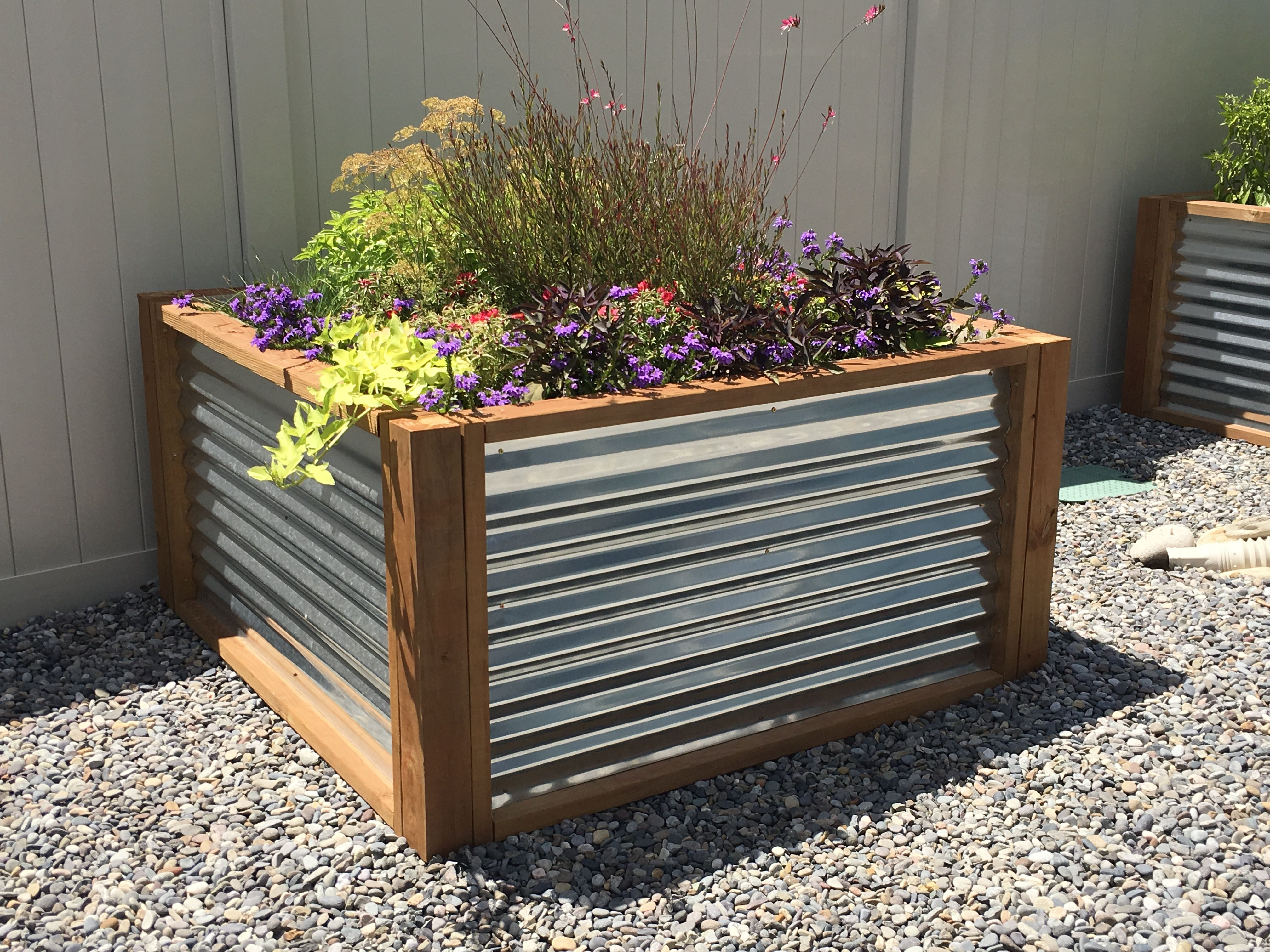 4X4 Galvanized Flower Bedturned out amazing! Outdoor