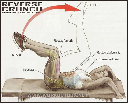 Best exercise for lower abs…reverse crunch. Plus it's not too hard on the spine.