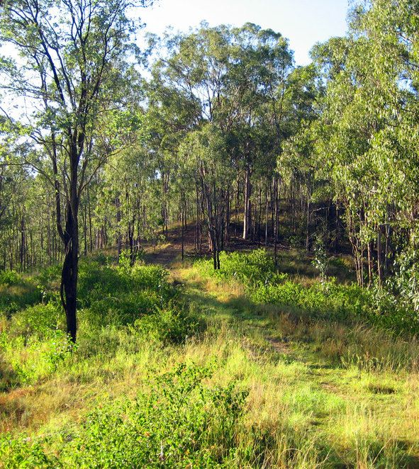 The early part of the Flinders track is very easy