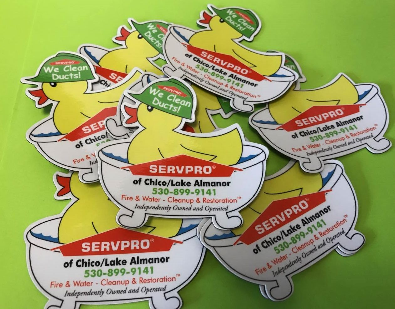 Did you know that SERVPRO of Chico/Lake Almanor does Duck