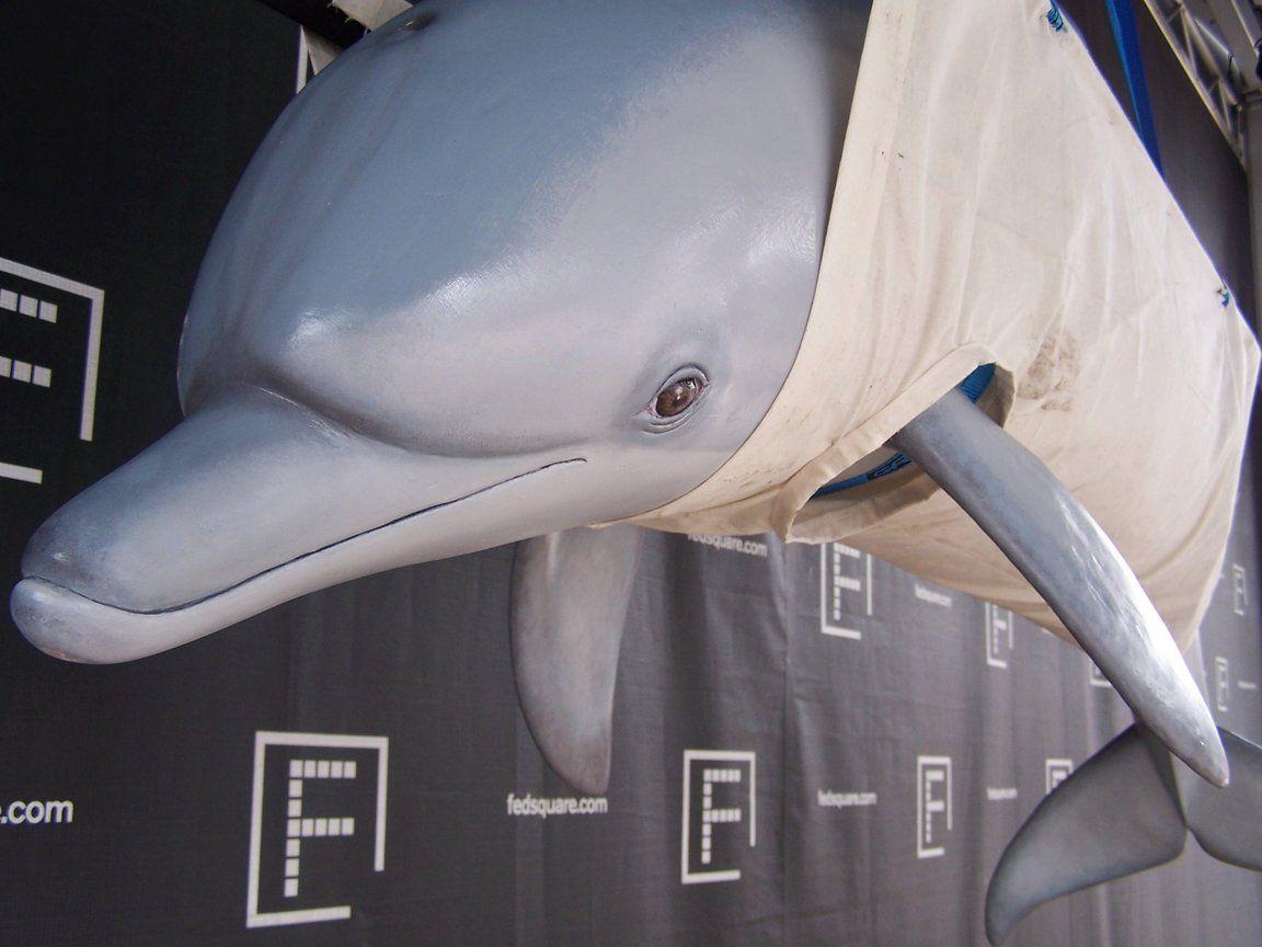 Soul's Paper Mache Dolphin Sculpture – Guest Tutorial | Ultimate