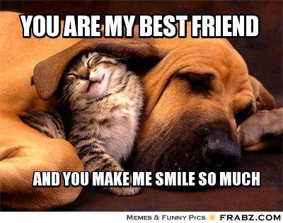 76ce6621f3cd29b5bc81ee7a74def5ed you are my best friend meme generator captionator funny