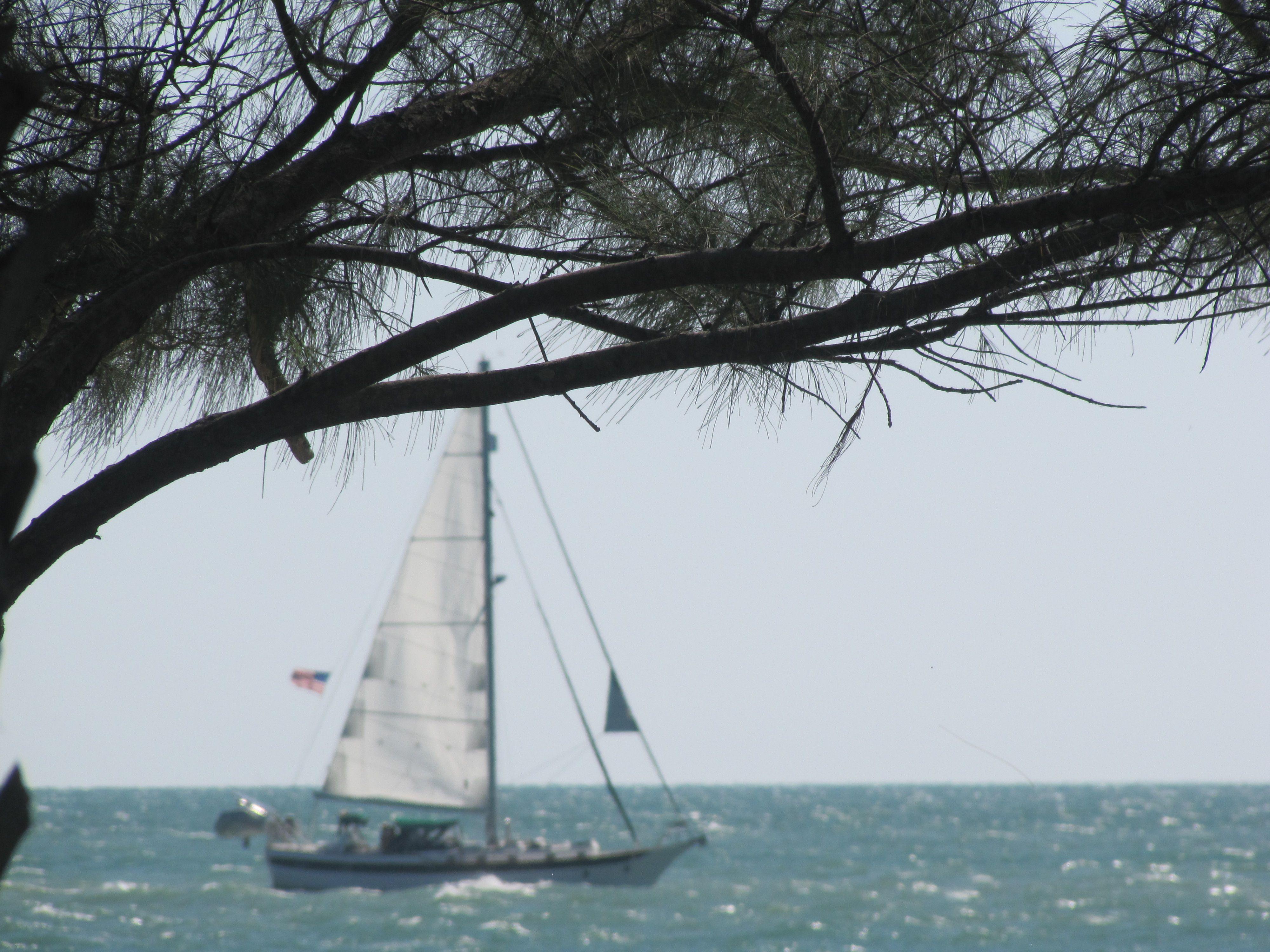 At the jetty venice fl photo by cinda photo sailing