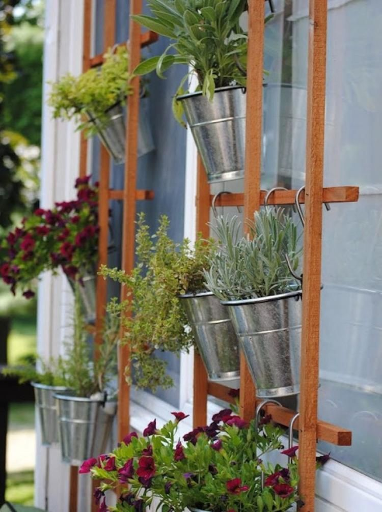 Vertical Garden Vegetables, fruits and berries can be