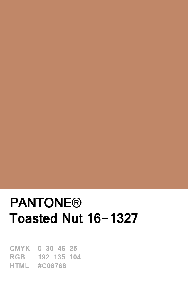 Pantone Toasted Nut 16-1327 Colour of The Day 02 January