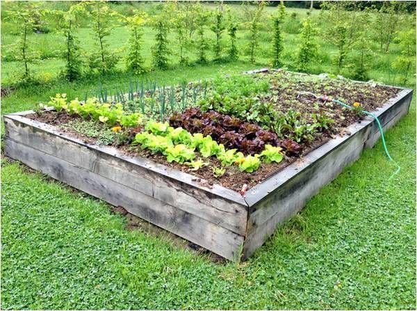 image associ e gardening jardinage pinterest. Black Bedroom Furniture Sets. Home Design Ideas