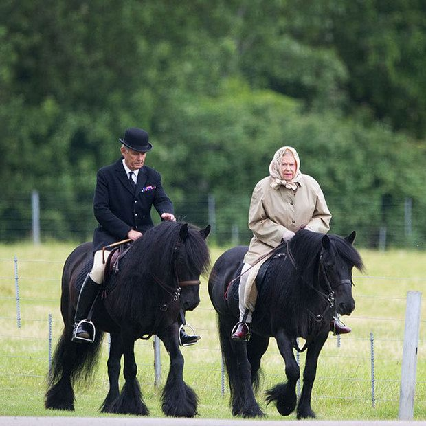 Queen Elizabeth Still Horseback Rides At 89 See The Pics