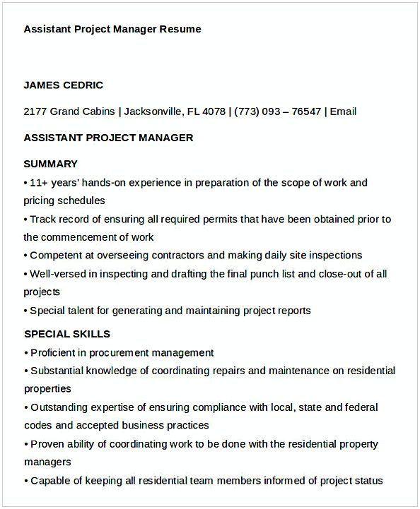 Cash Management Officer Sample Resume Delectable Assistant Project Manager Resume 1 #projectmanagementtemplates .