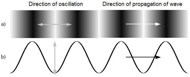 Diagram Showing That Transverse Waves Oscillate In A Direction That