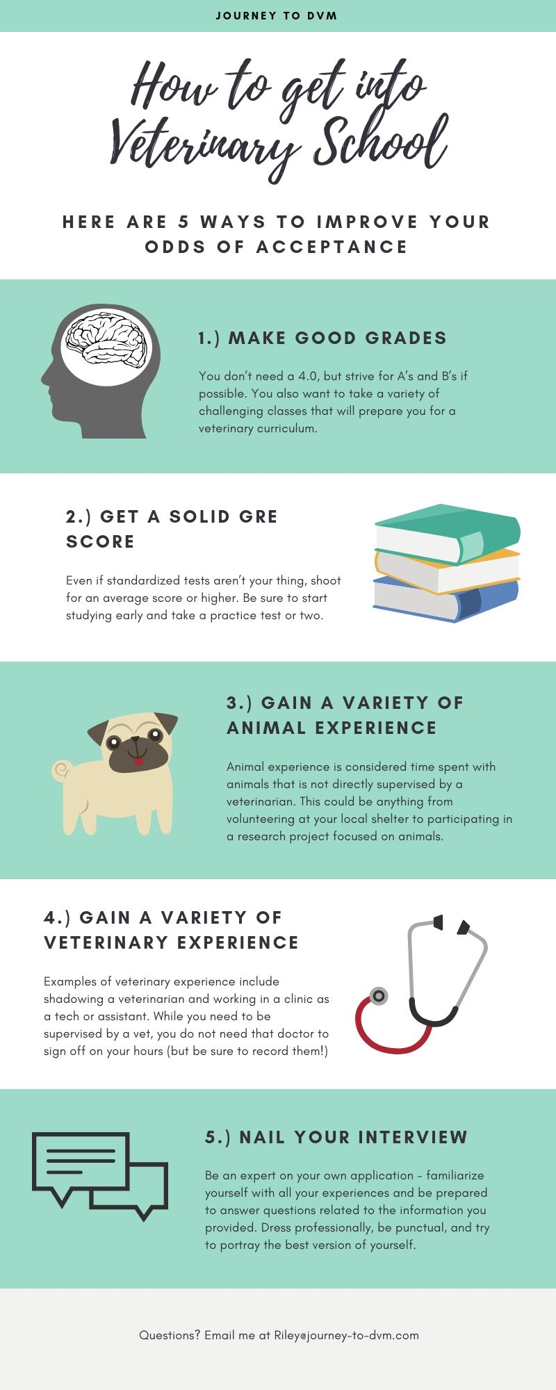 Want To Know The Perfect Recipe For Getting Into Veterinary School Check Out This Infographic For Some Tips Veterinary School Veterinarian School Vet School