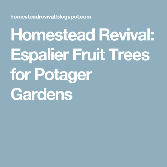Homestead Revival: Espalier Fruit Trees for Potager Gardens
