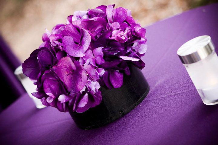 #hydrangea #purple #kitchen12000 www.kitchen12000.com