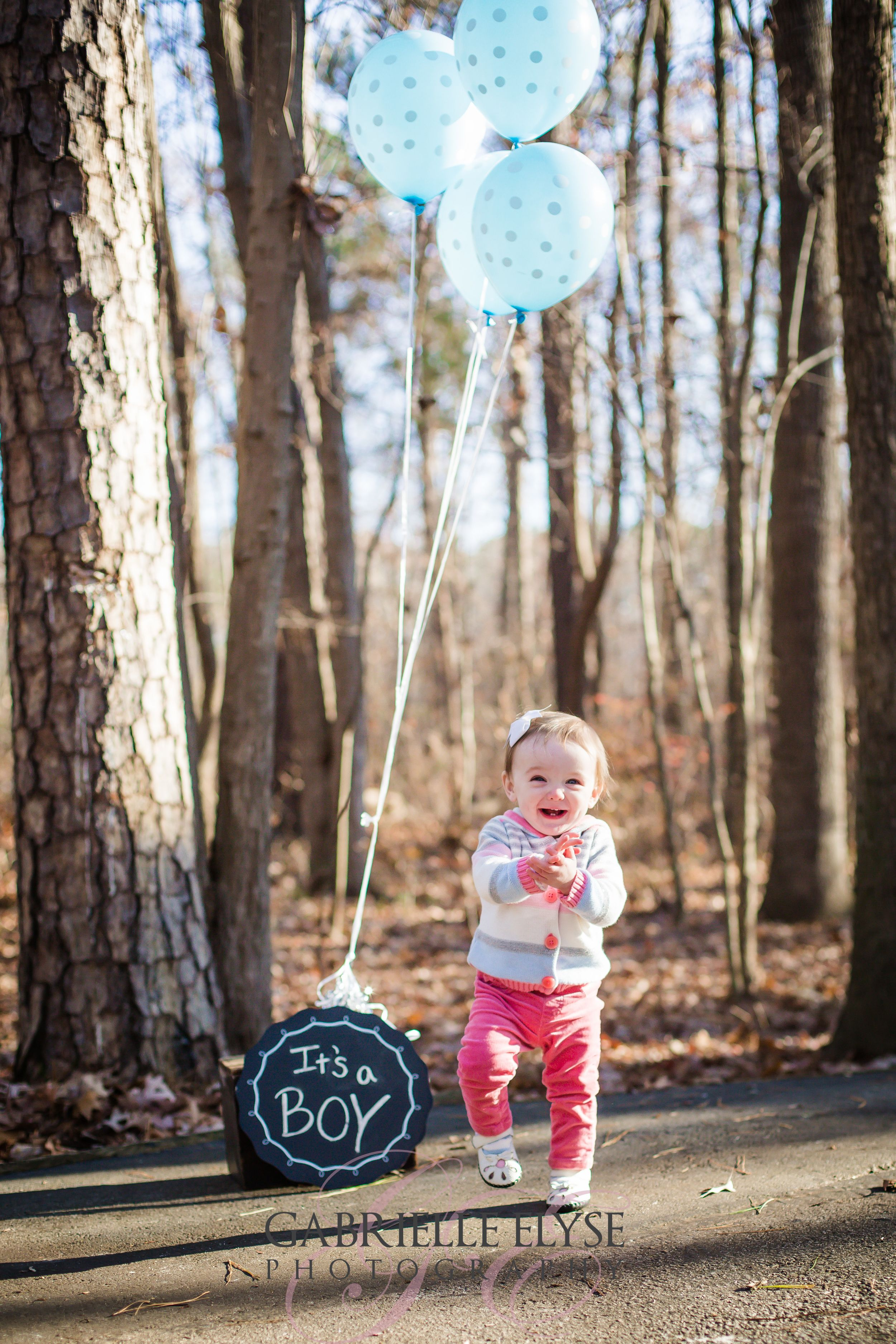 Miss Ellen Is 1 And A Big Sister Bond Park Cary Family Photographer Family Photographer Servicing Raleigh Nc Sibling Gender Reveal Baby Gender Reveal Reveal Pictures