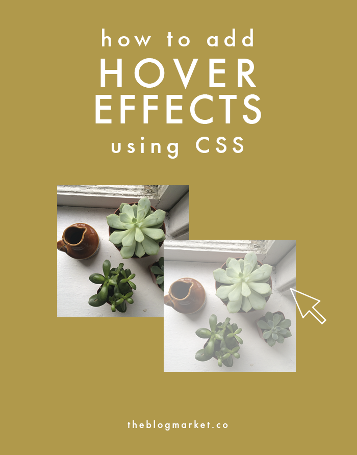 CSS Basics: Adding Hover Effects | Blogging / Design