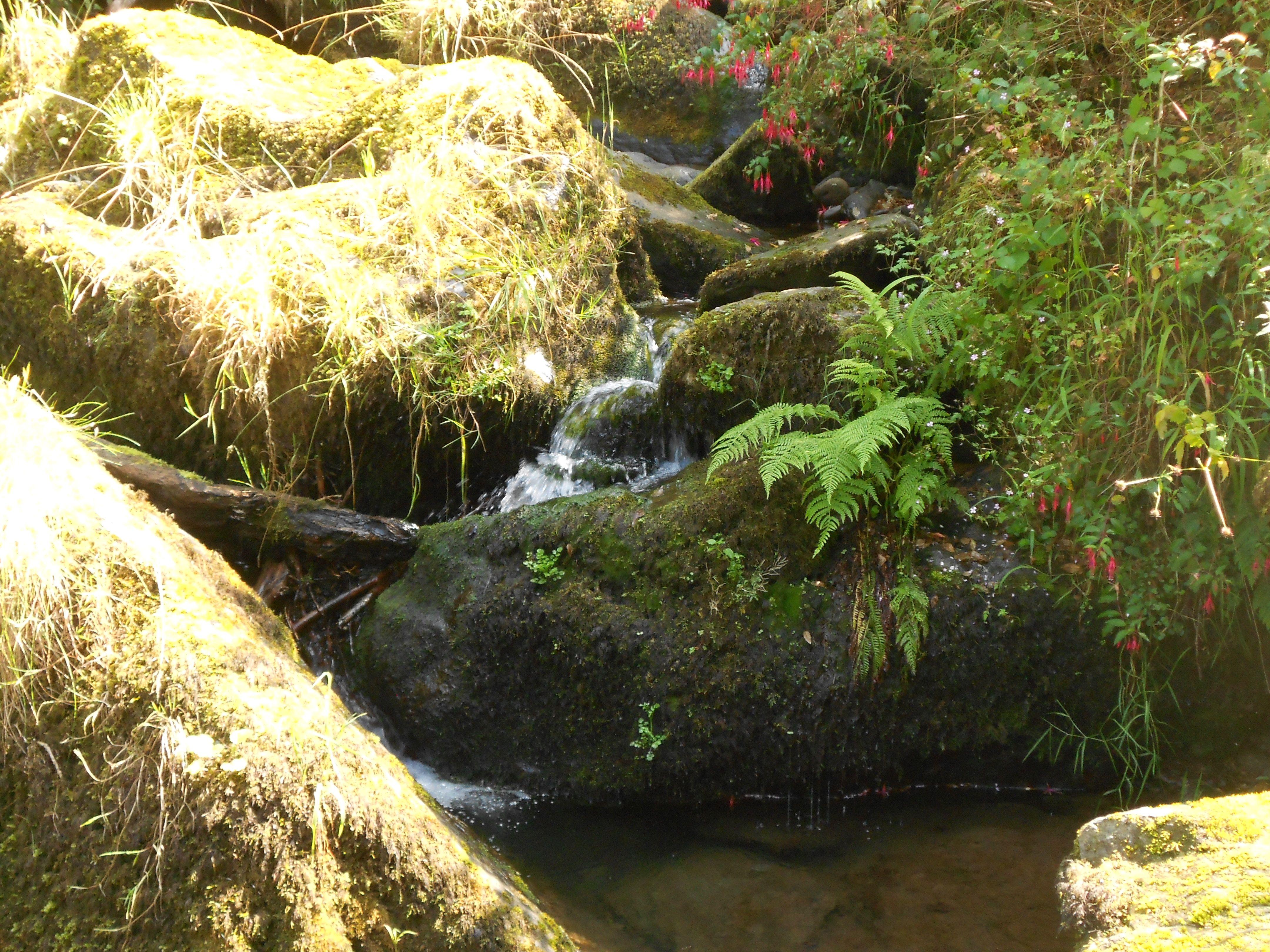 Glen Lyn Gorge, Lynmouth