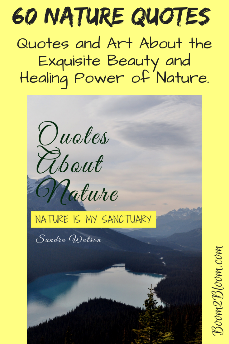 Nature Is My Sanctuary Quotes About Nature Ebook Obsessed With