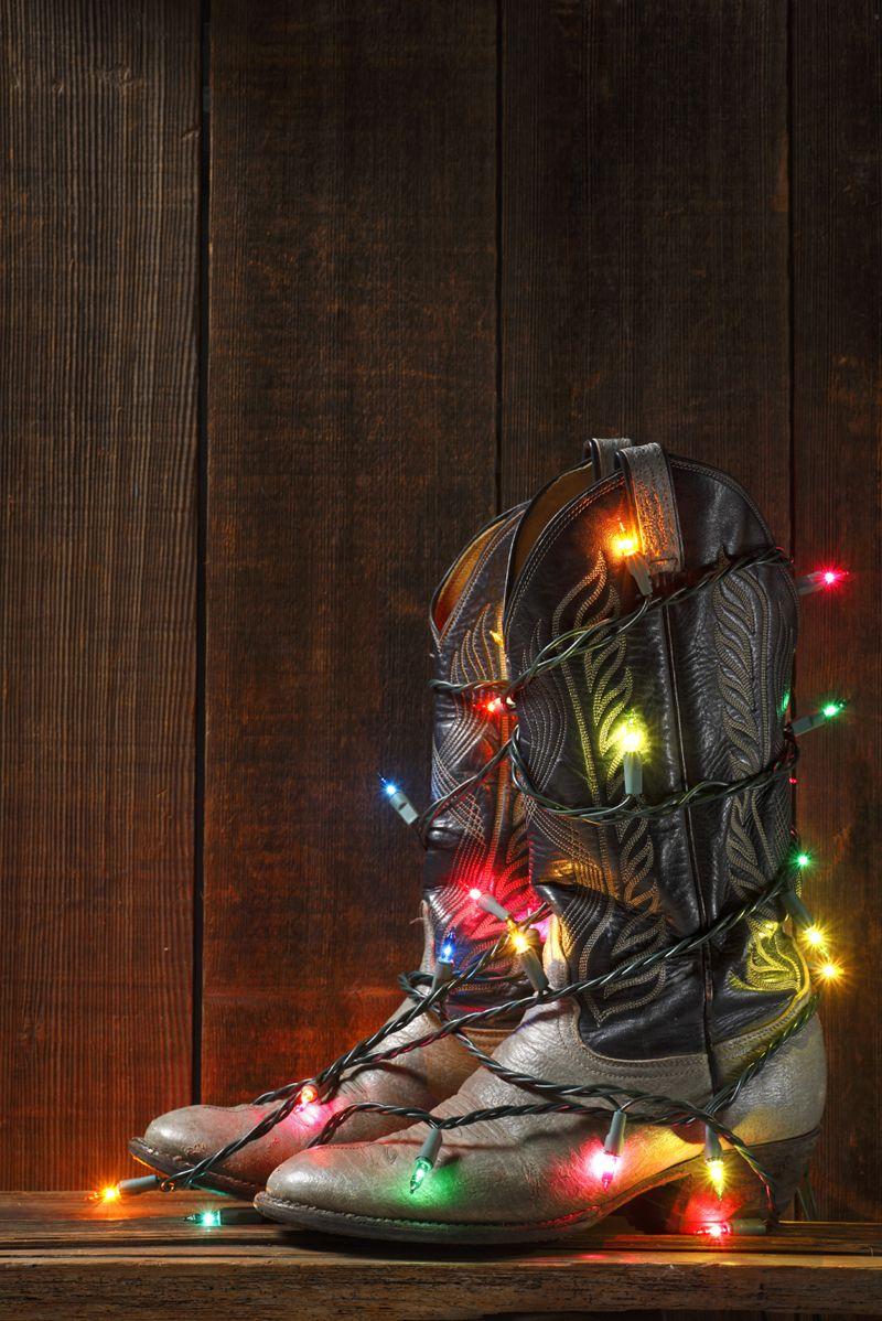 christmas lights | All About Texas Christmas Lights Photo Contest ...