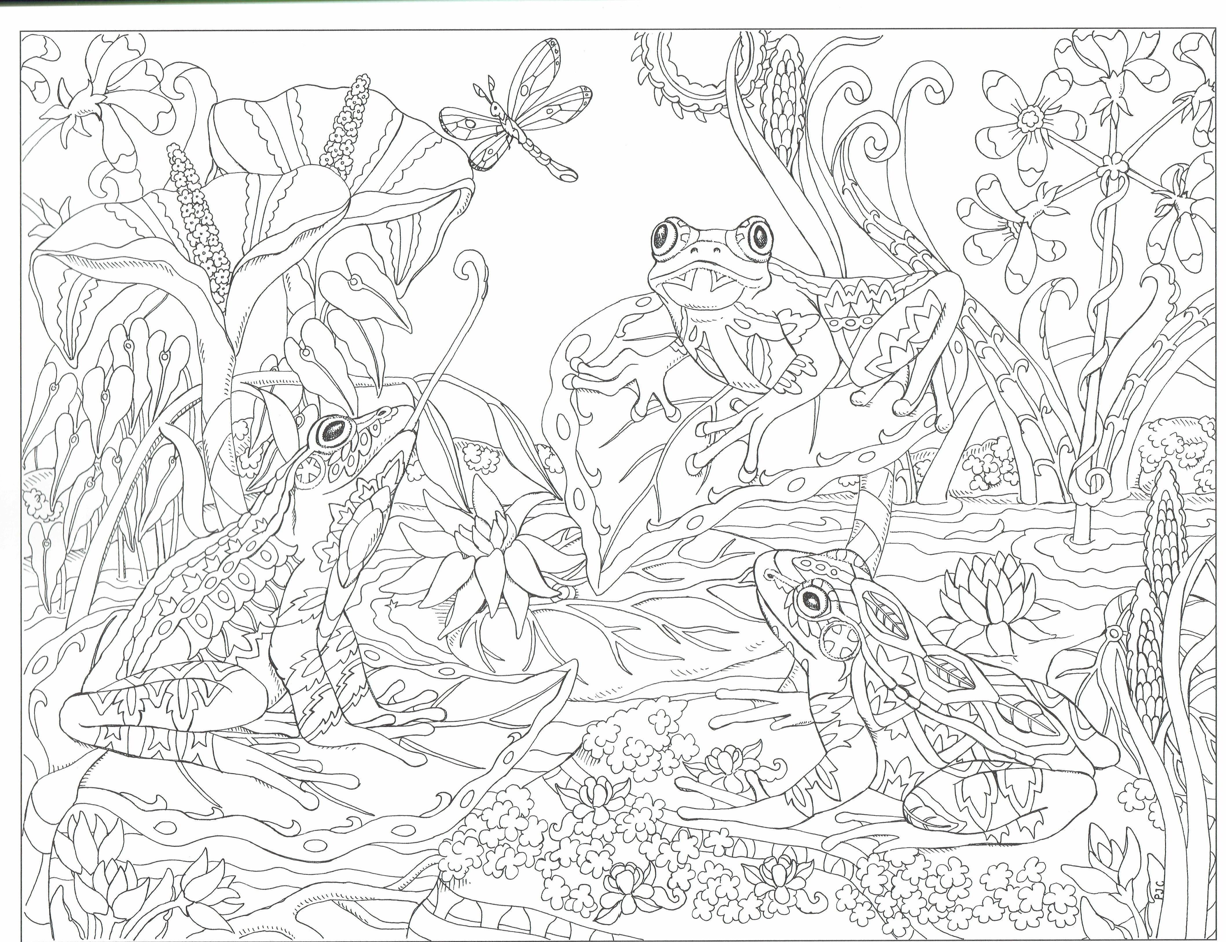 Frog Pond Color Me Your Way Page Angel Coloring Pages Fairy Coloring Dover Coloring Pages [ 3256 x 4235 Pixel ]