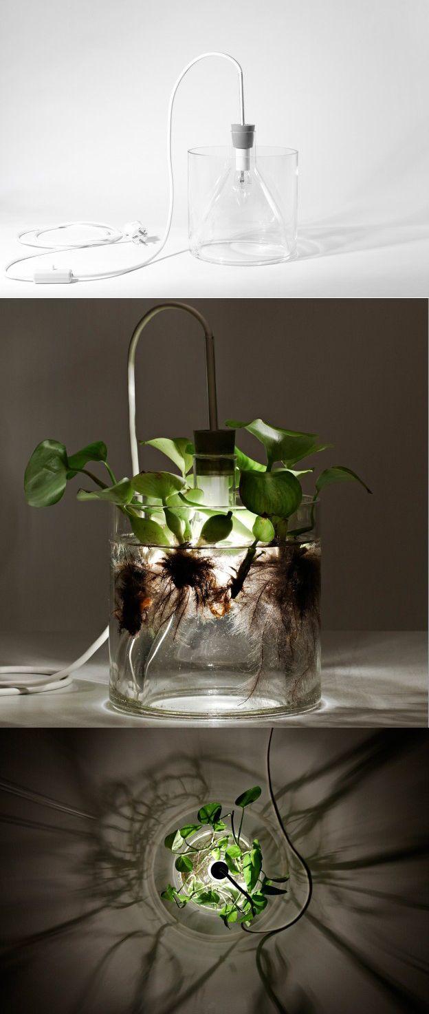 vase leuchte | Decor, Home decor, Creative