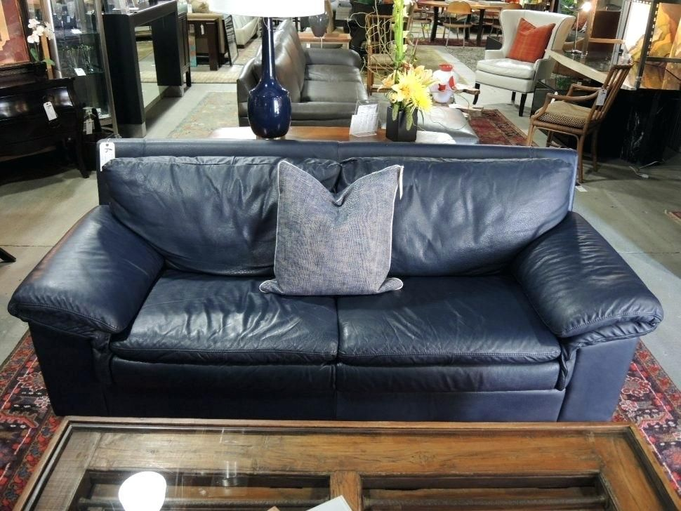 pin by syred net on leather sofa blue leather sofa navy blue rh pinterest com navy blue leather sofa sale blue leather sofa ashley furniture