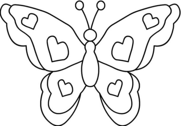 Mewarnai Gambar Kupu Kupu Education Butterfly Coloring Page