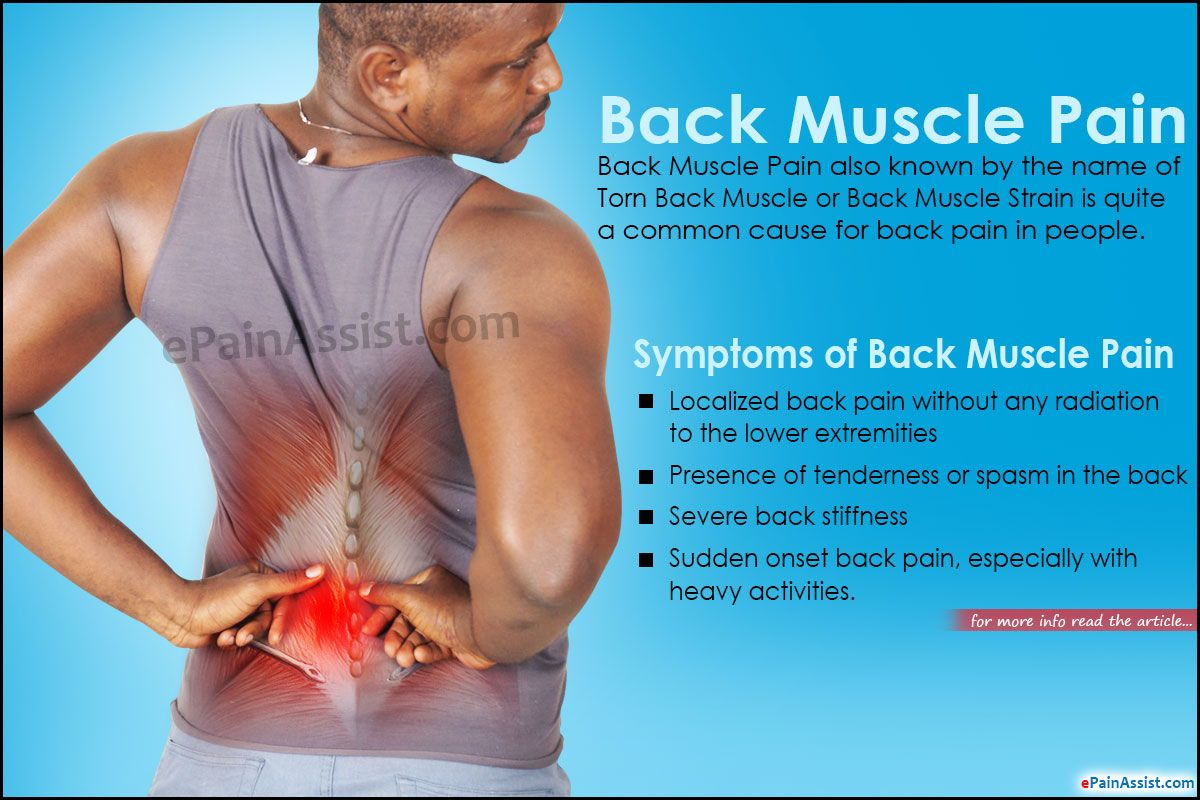 Back Muscle Pain Muscle Strain Back Muscles Physical Therapy Back Pain