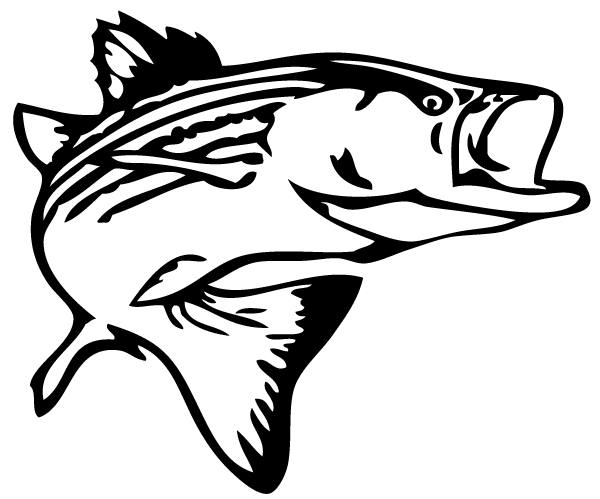 bass fish outline clip art free clipart images rock art rh pinterest com Largemouth Bass Fish Clip Art Graphic Black and White Largemouth Bass