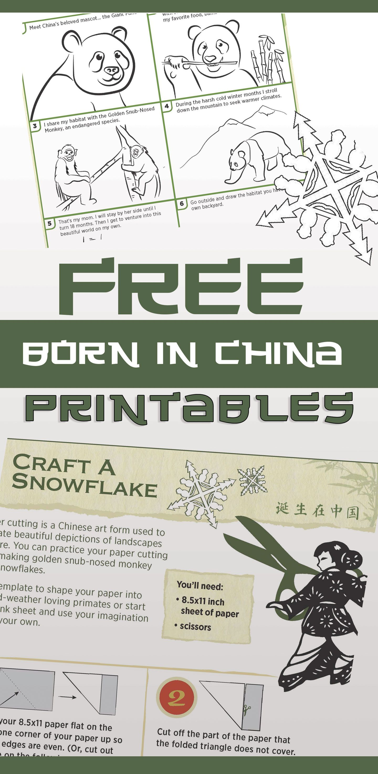 Born in China printable activity sheets from Disney! | Curriculum ...